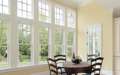 Why should I have my windows cleaned monthly?